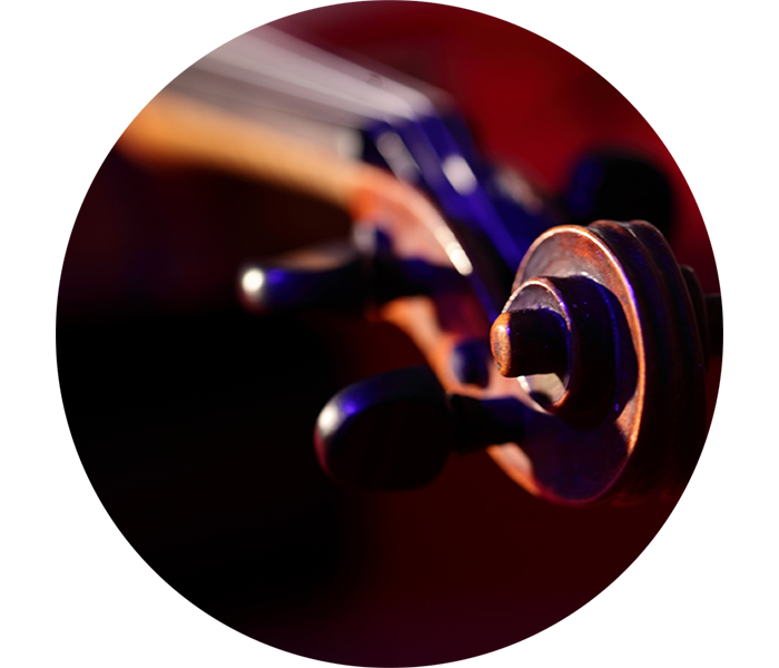 Kontrabass Instrument