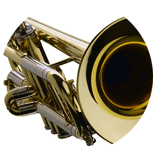 Trumpet with Fabian Engwicht For beginners and advanced players.